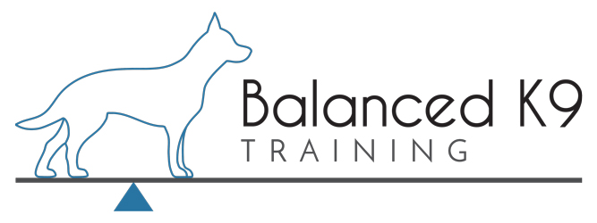 Balanced K9 Training
